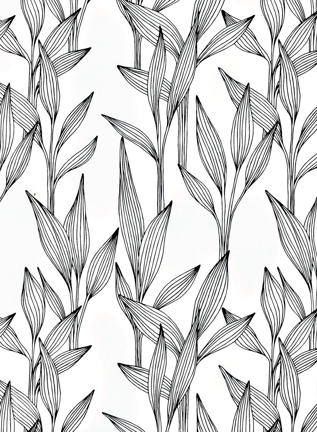 手绘黑白工笔画树枝背景图片设计素材_高清其他模板()