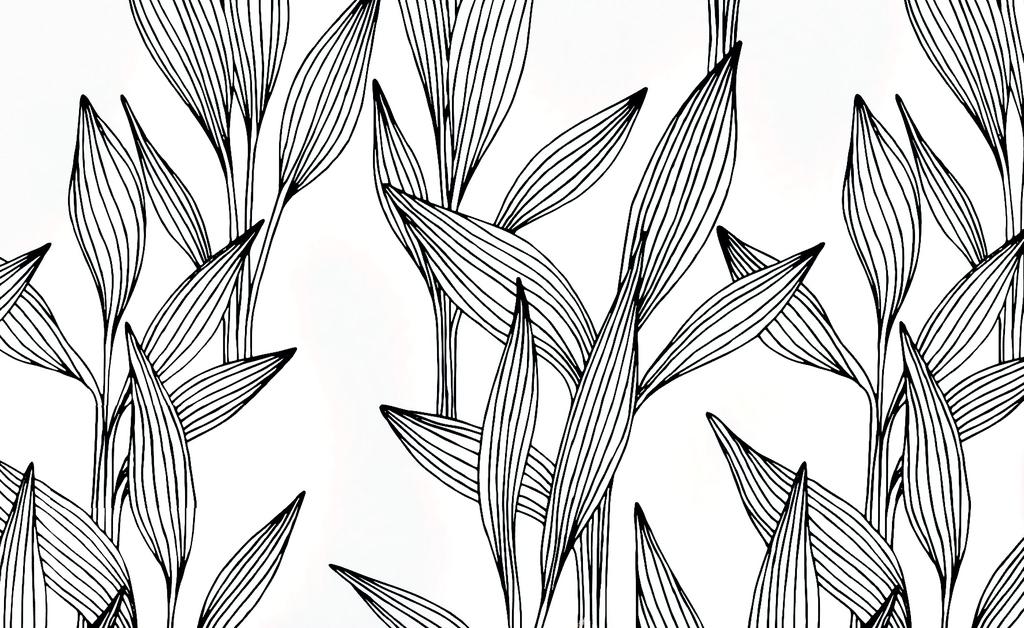 手绘黑白工笔画树枝背景