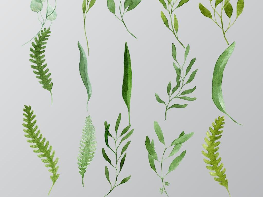 水彩树叶水彩文艺手绘树叶手绘叶子叶子水彩