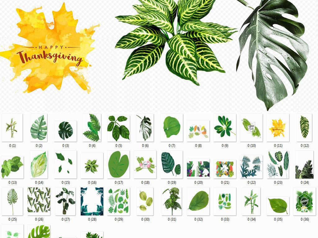 北欧美式手绘插画水彩绿植设计背景素材