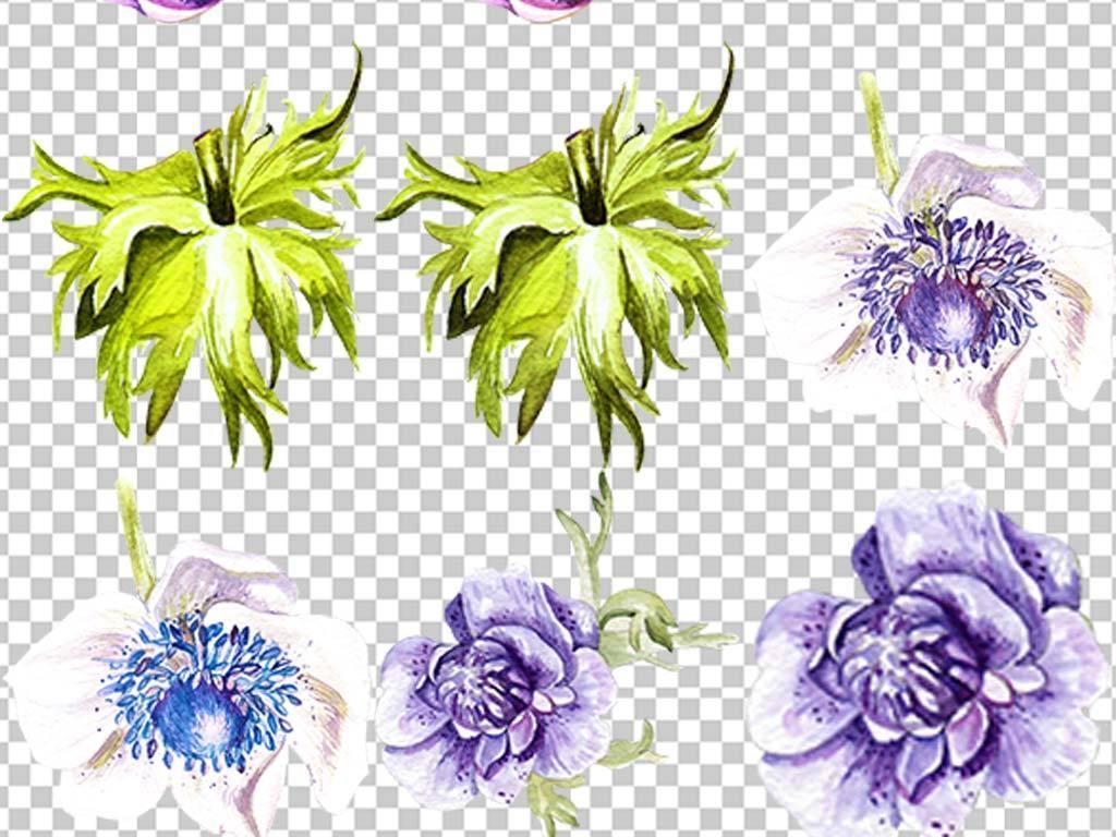 水彩手绘森系热带雨林花朵植物设计元素