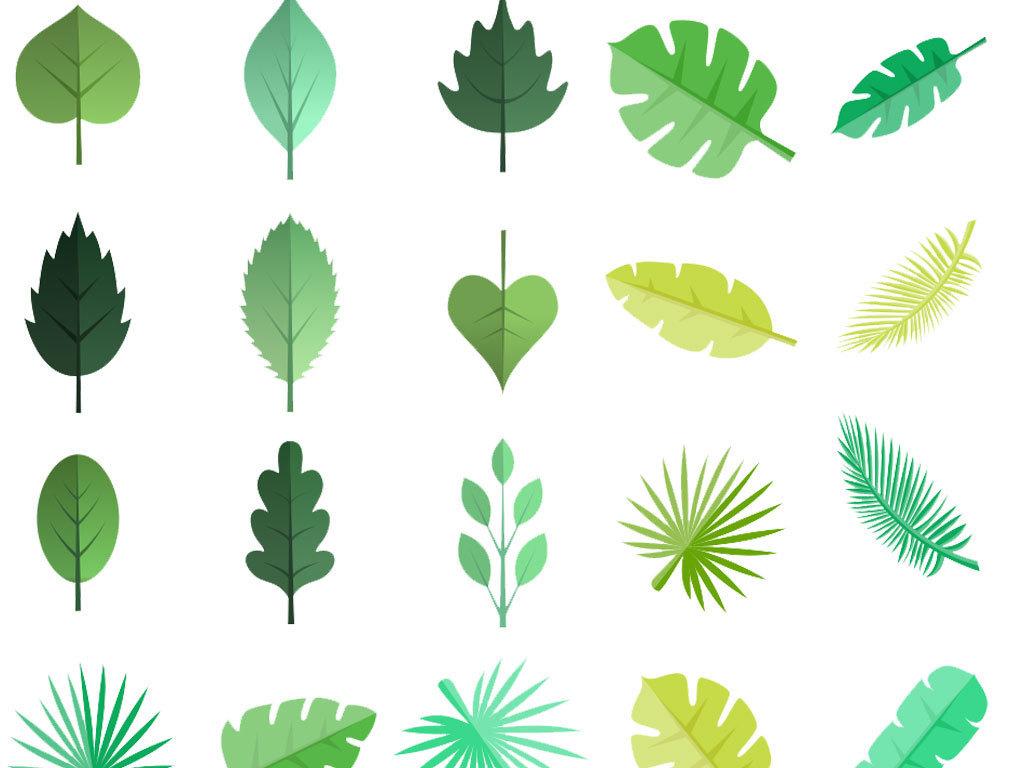 手绘水彩叶子树叶热带植物矢量图