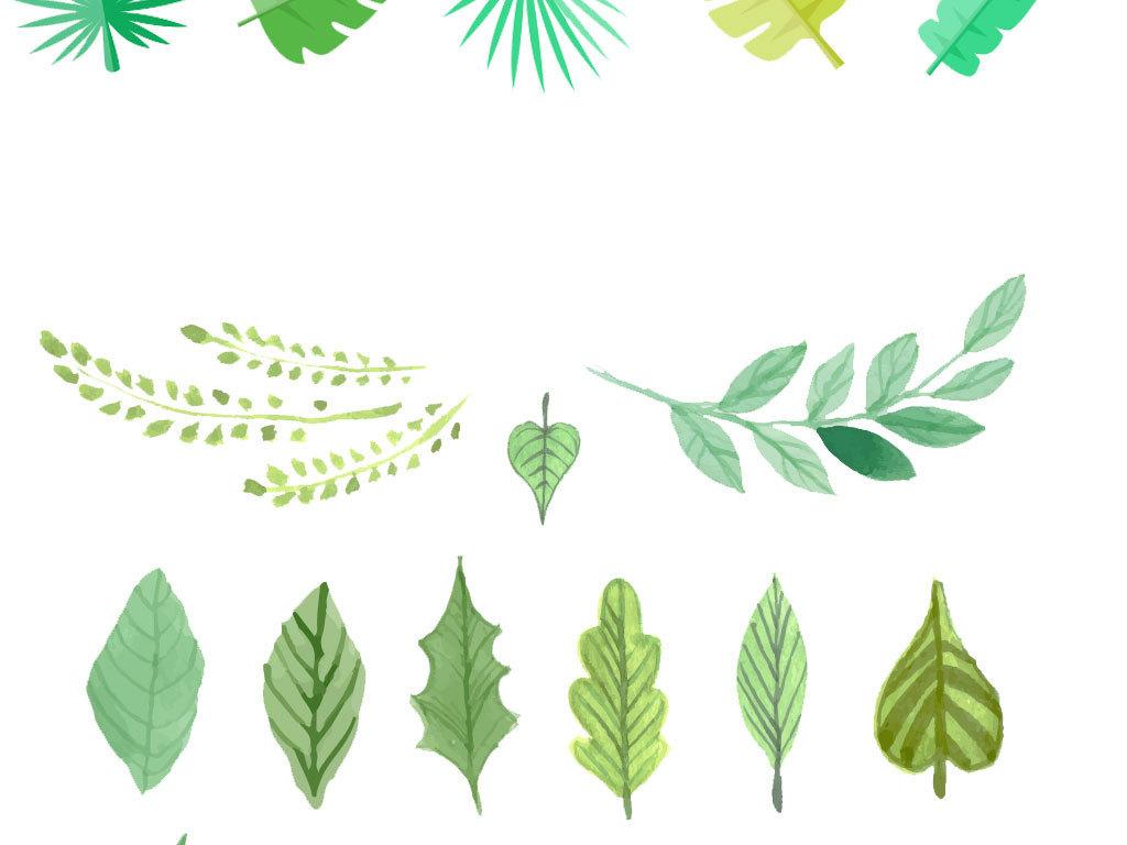 手绘水彩叶子树叶热带植物矢量图图片素材_ai模板下载