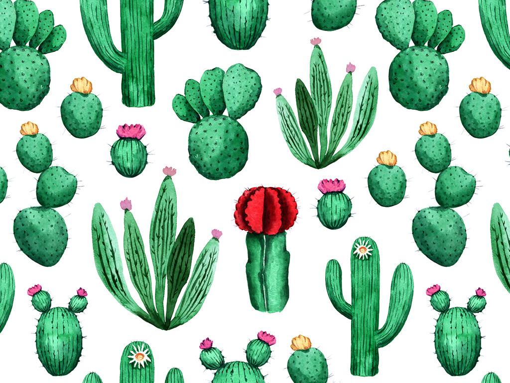 水彩仙人掌热带植物家纺图案