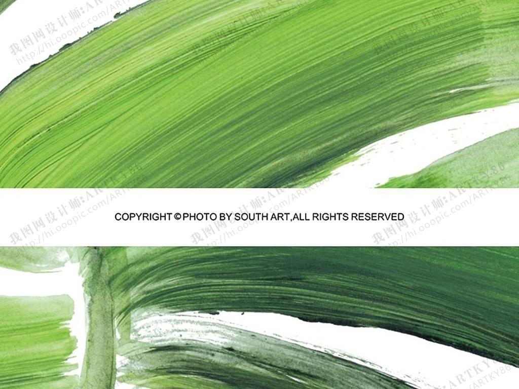 北欧风格绿色植物叶子热带植物龟背竹叶子图片