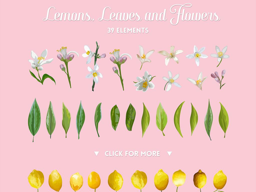 小清新水彩手绘柠檬树叶子柠檬花卉设计素材