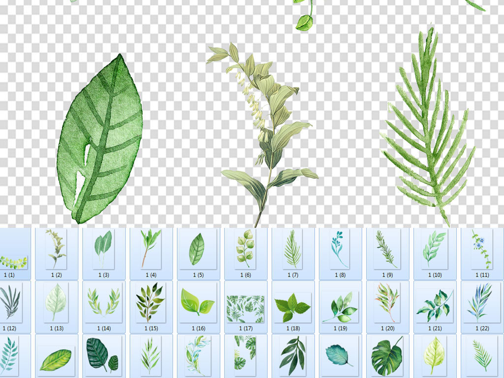 清新北欧唯美手绘插画水彩绿植设计背景素材