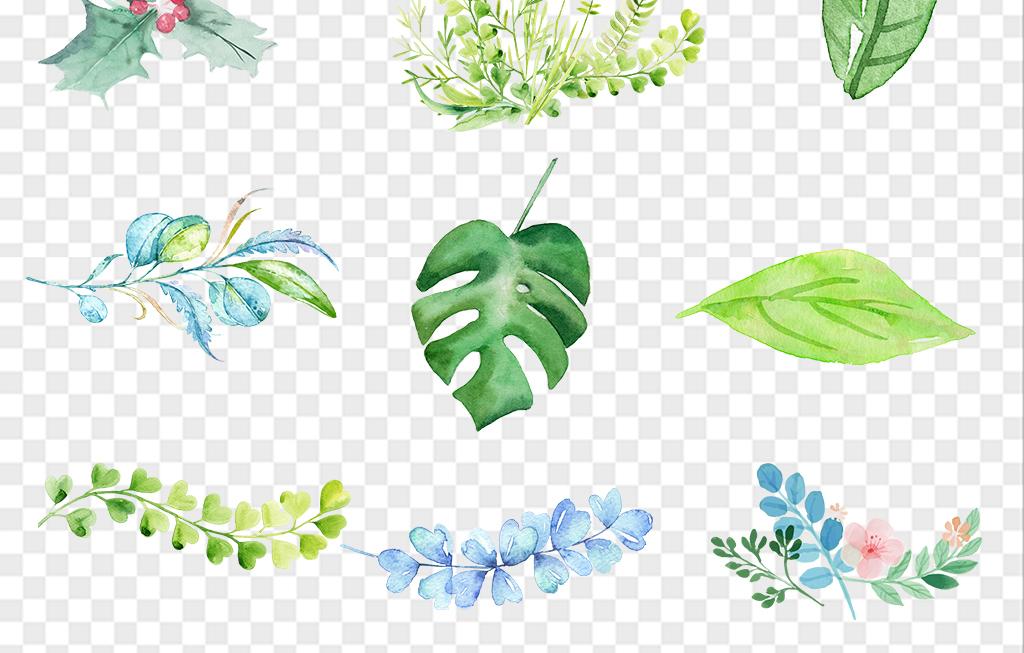 森系小清新手绘水彩叶子树叶热带植物背景