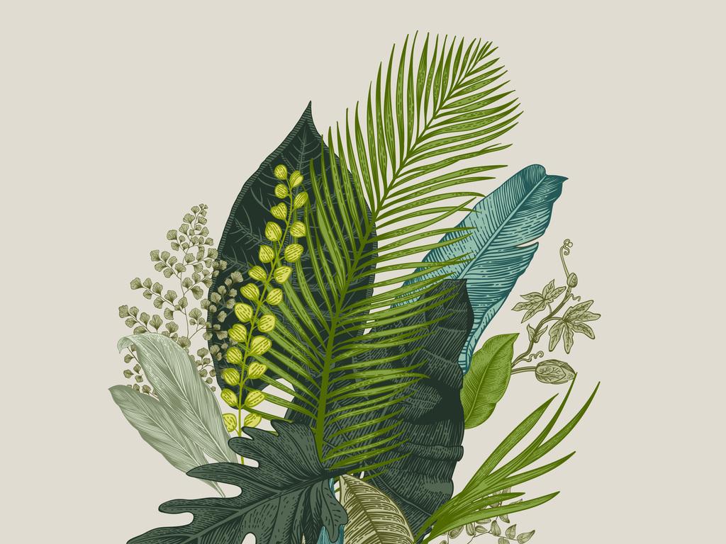 手绘热带植物叶子图案图片素材_ai模板下载(4.75mb)