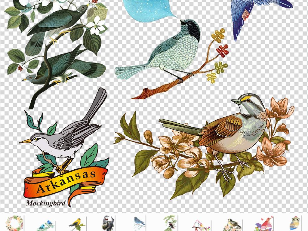森系手绘鸟水彩鸟彩色鸟透明免抠png