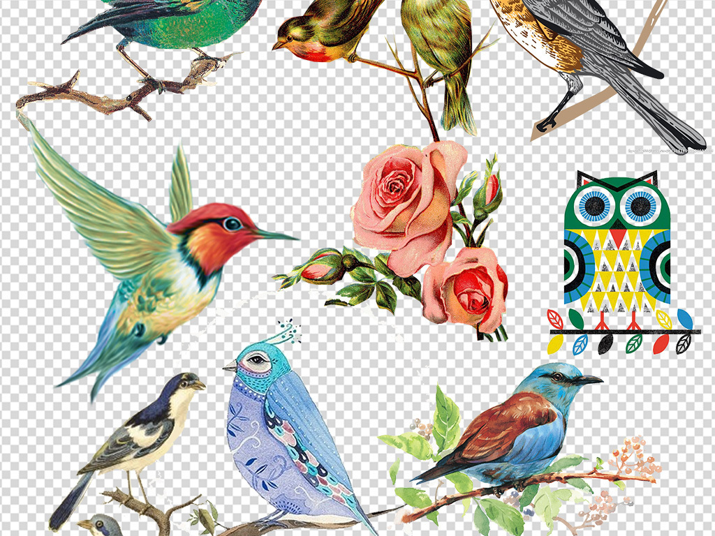 手绘水彩鸟森系背景png素材