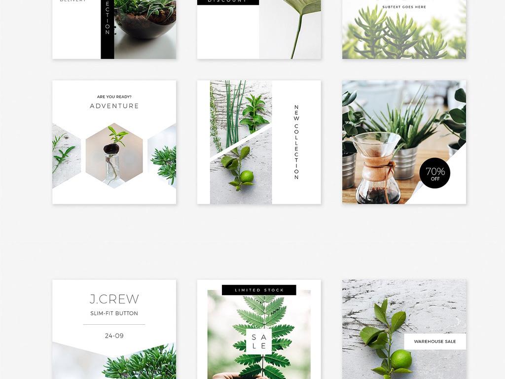 小清新森系简洁风格排版海报图片