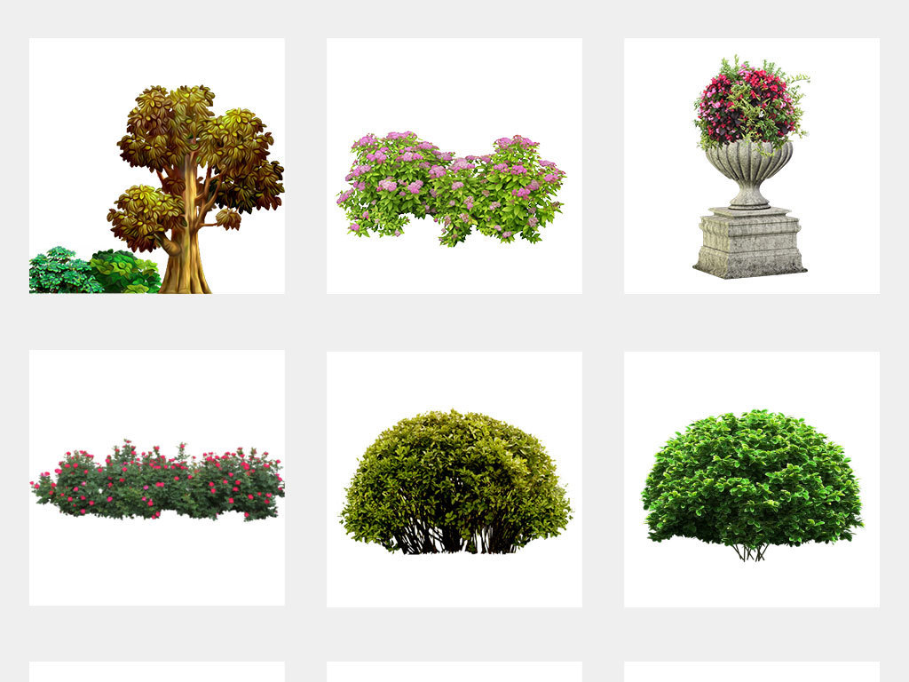 绿色灌木丛绿化灌木园林景观植物树