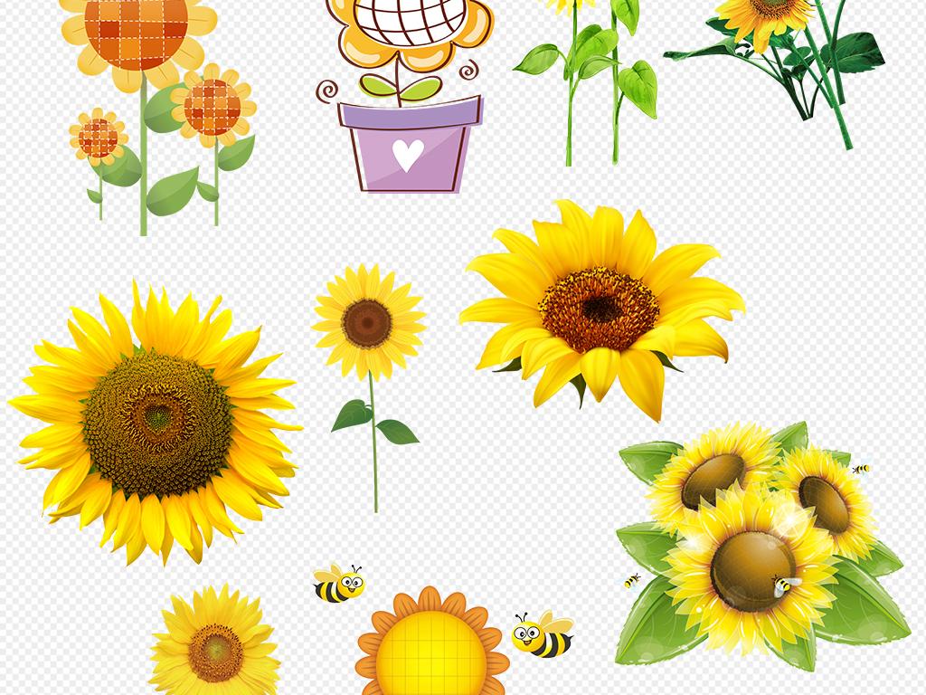卡通手绘向日葵太阳花设计元素素材免扣图片_模板下载