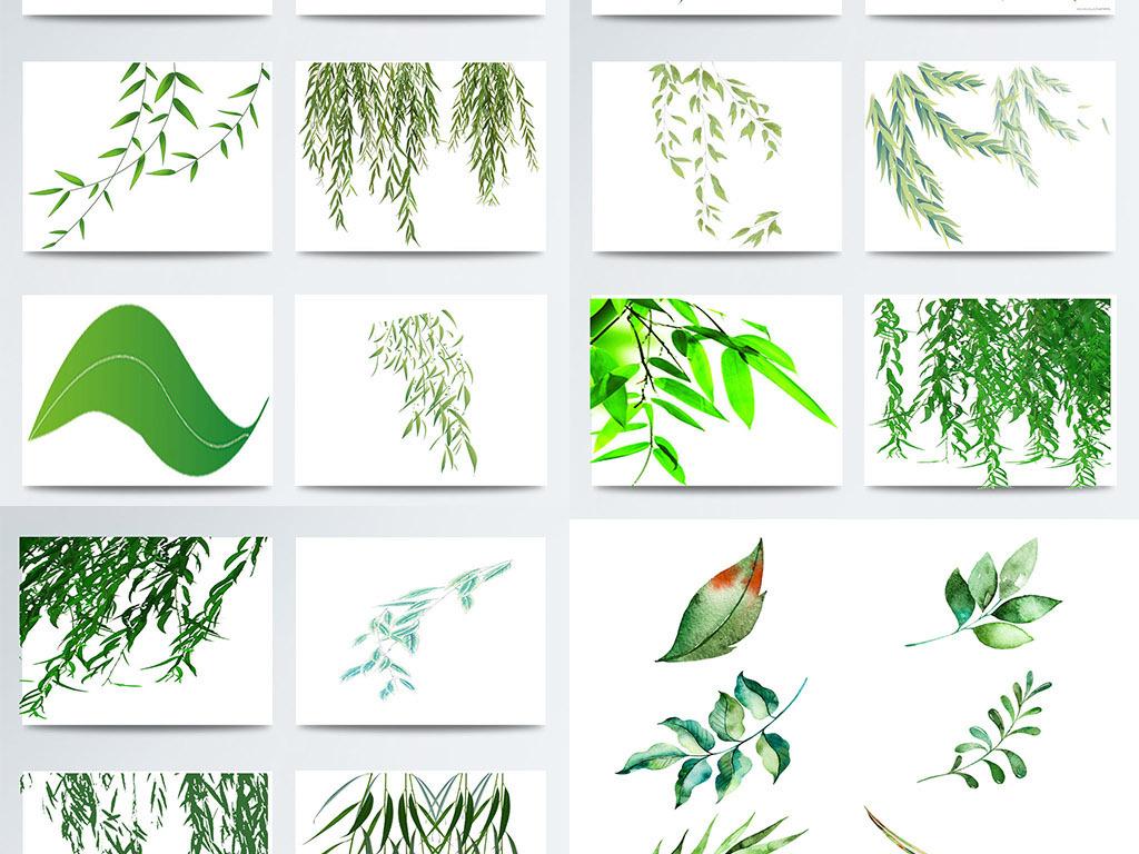 手绘柳树叶子图案元素