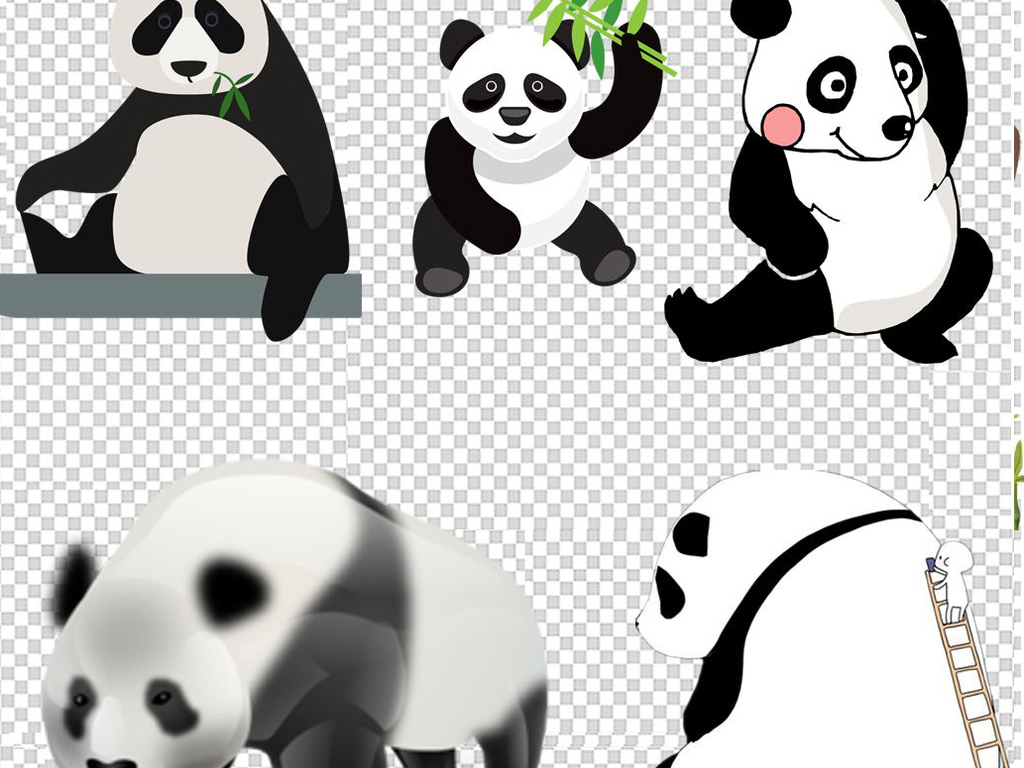 熊猫素材手绘熊猫可爱熊猫q版