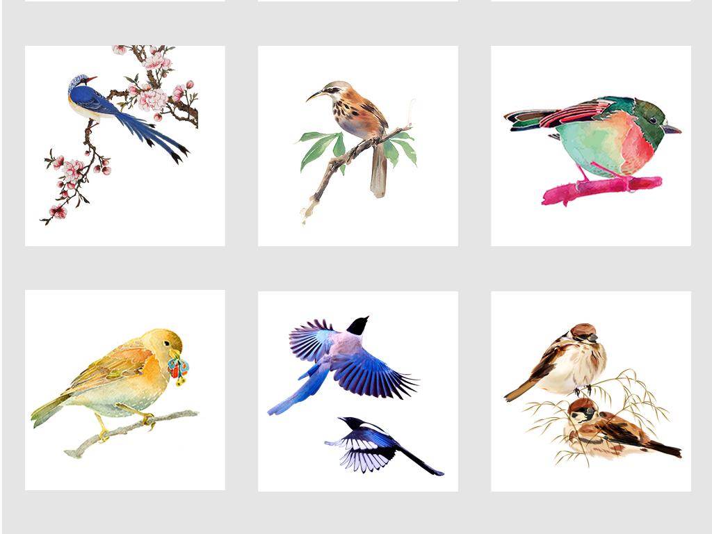 中国风手绘水彩热带鸟png素材合集