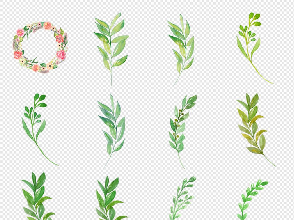 唯美森系手绘水彩花朵花卉花环绿叶树叶素材
