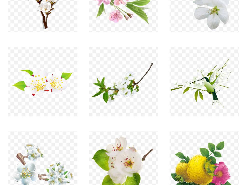 手绘花朵简单颜色