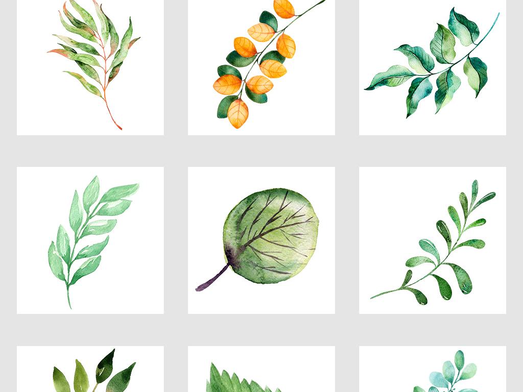 北欧小清新美式手绘插画水彩绿植png素材