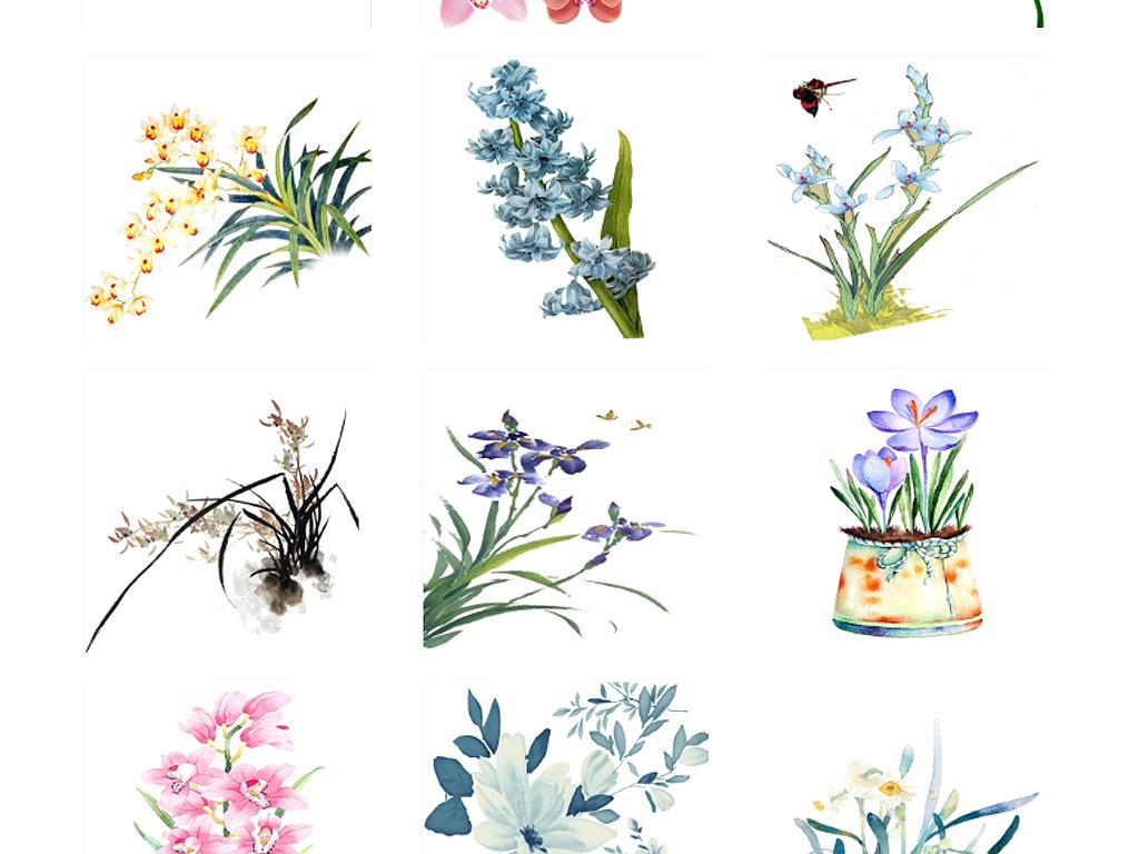 木兰花木兰花植物木兰花团木兰花图片木兰花免抠木兰花素材花卉图案