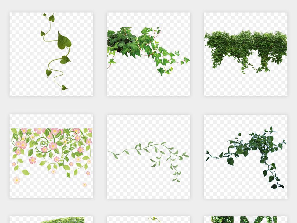 手绘花藤花藤边框树叶藤蔓树藤树叶花纹树叶绿色素材花边藤蔓绿色树绿