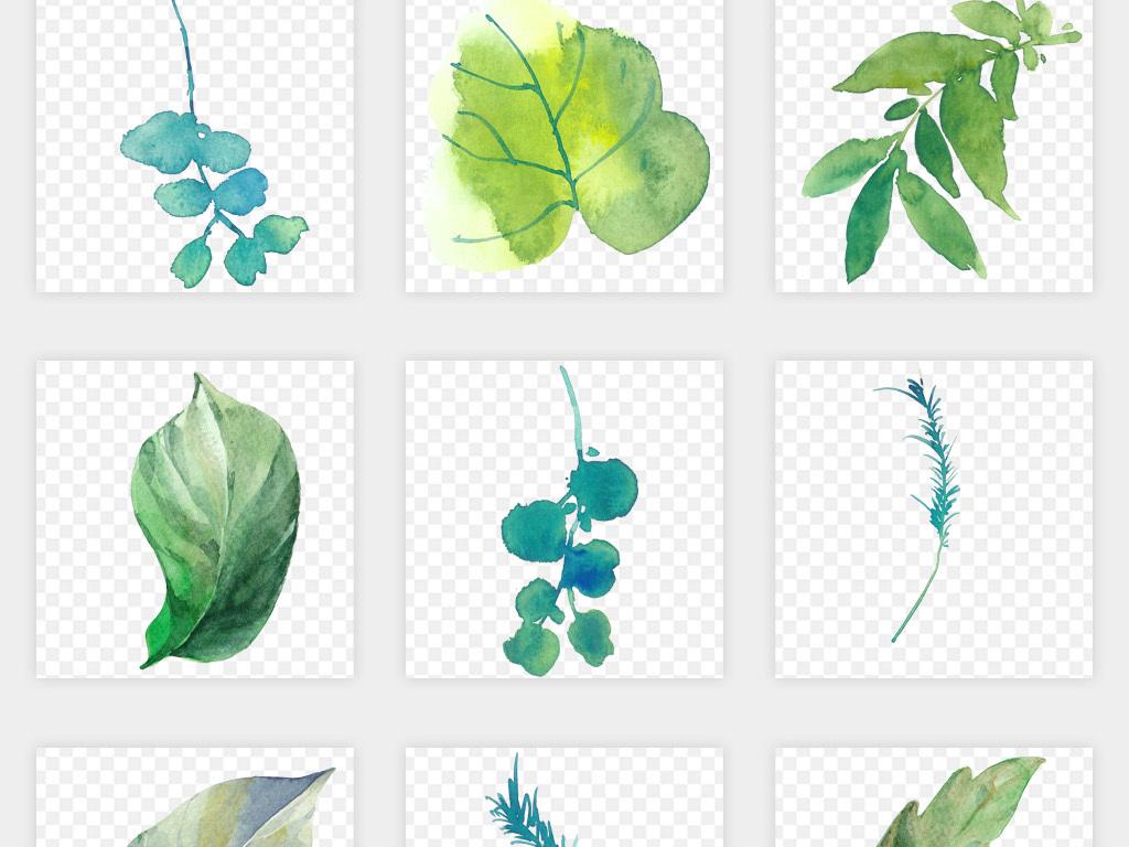 水彩手绘绿色叶子树叶png免扣素材