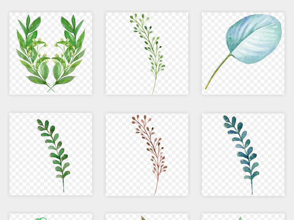 水彩手绘自然绿色枝叶树叶花枝叶子png免扣素材