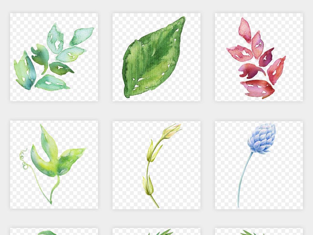 手绘植物唯美背景绿色背景水彩背景绿色卡片手绘水彩叶子树叶绿色手绘