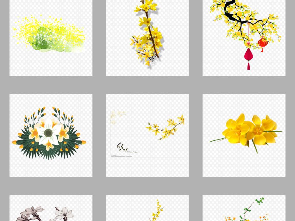 花朵花蕊春天春季素材春天素材手绘素材春天手绘透明素材迎春花唯美素