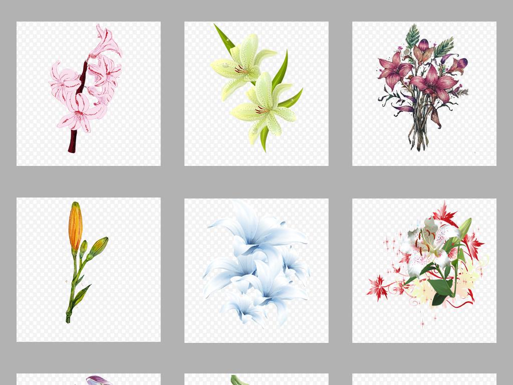 梦幻唯美卡通手绘百合花卉花朵花束png