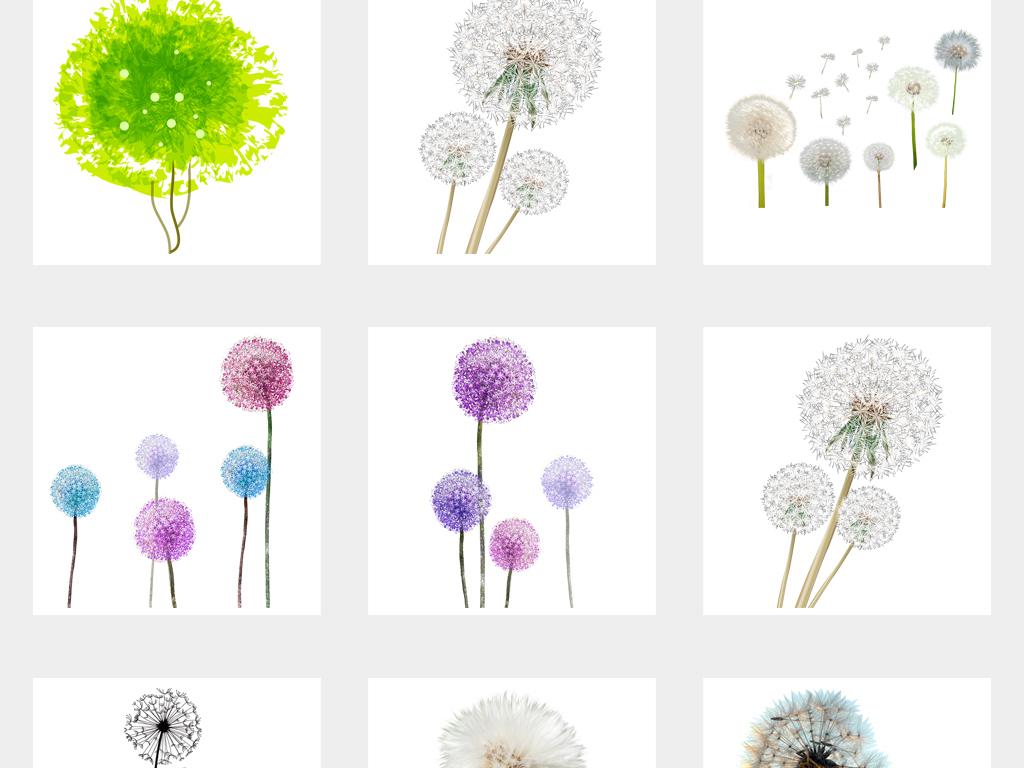 唯美抽象手绘蒲公英花卉png素材