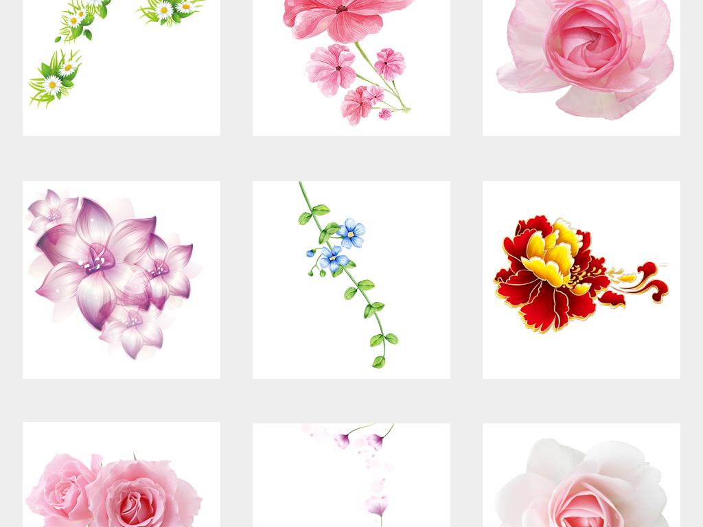 手绘唯美花卉树叶植物边框png免扣素材