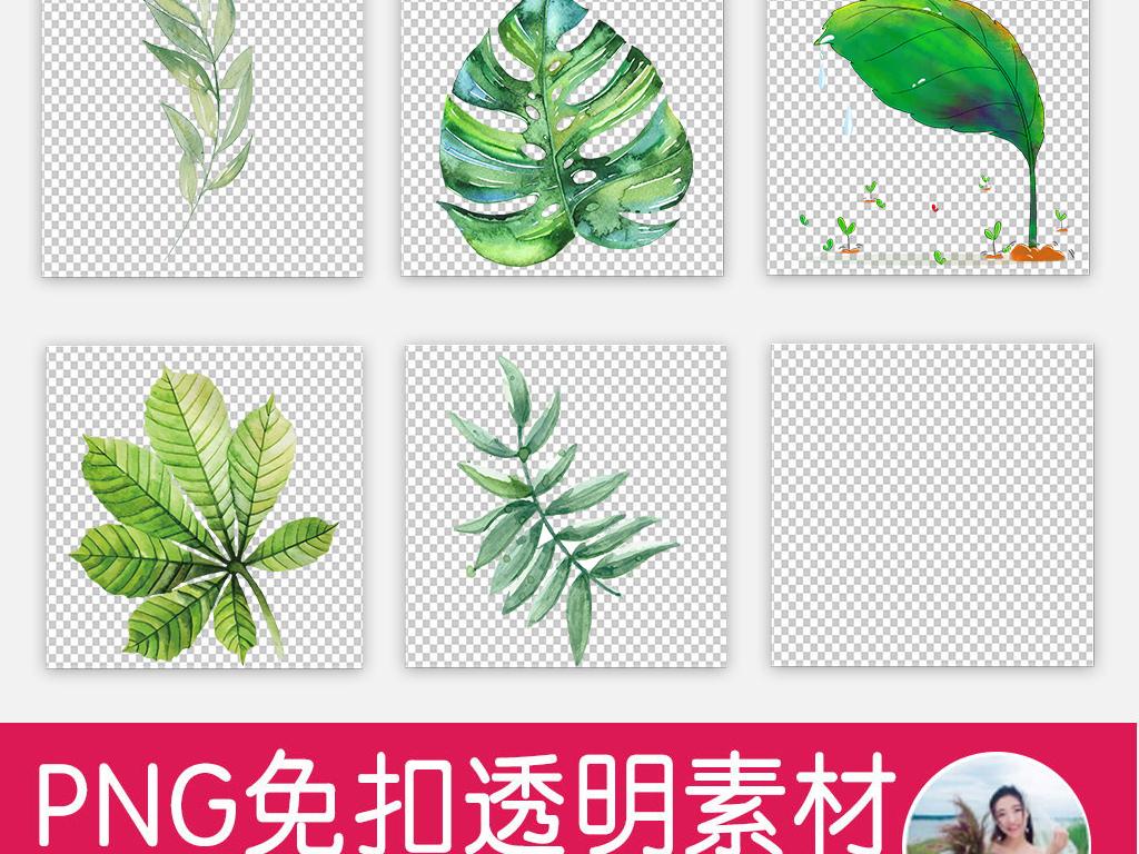 北欧小清新美式手绘水彩绿植树叶png素材