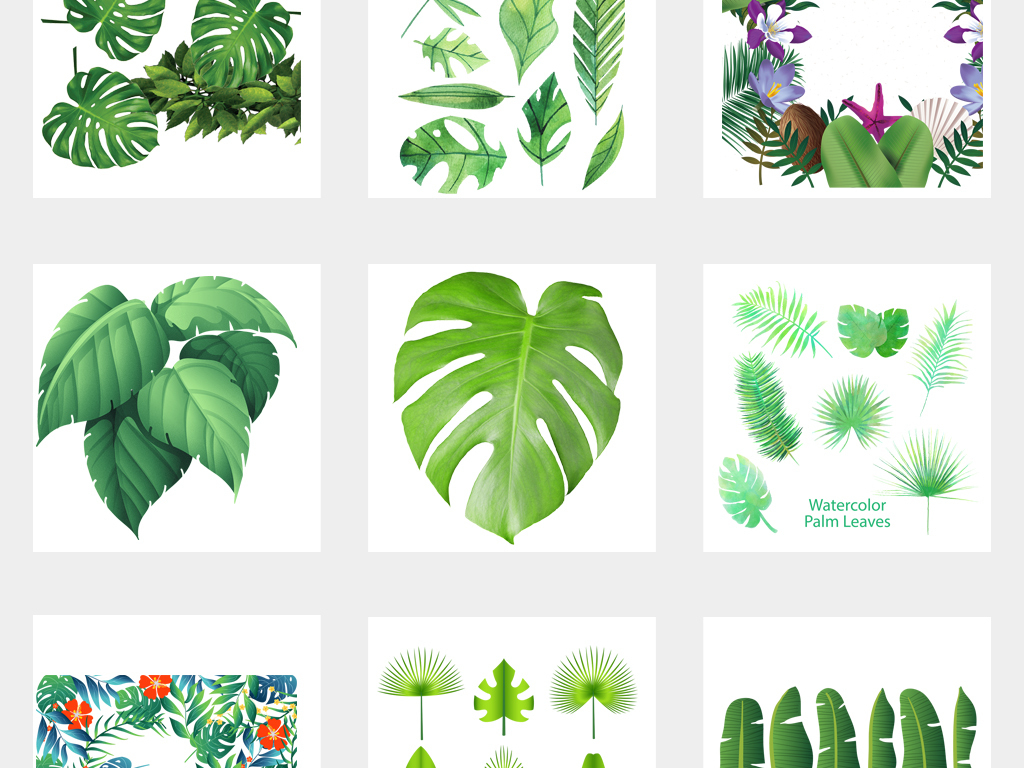 小清新手绘水彩热带绿植叶子png素材