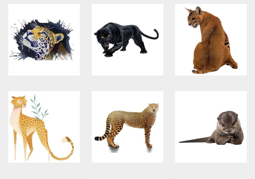 小动物手机壳图案设计儿童画手绘动物水墨黑白壁画