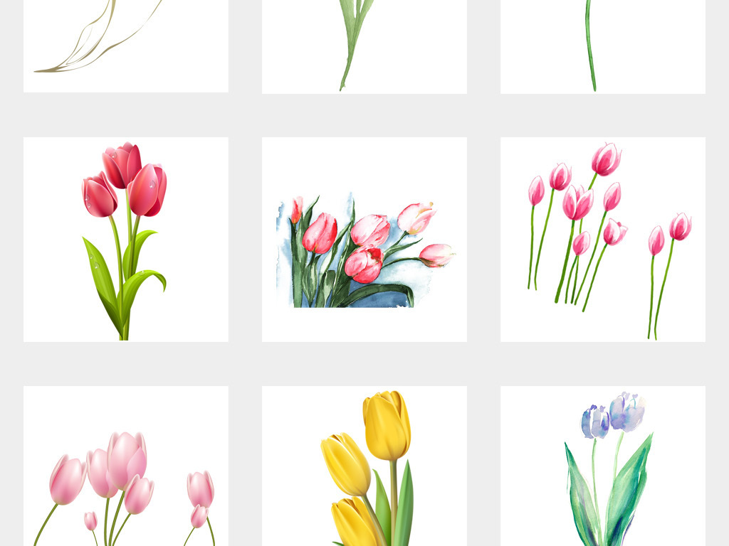 50款卡通手绘郁金香花卉花朵png透明背景免扣素材