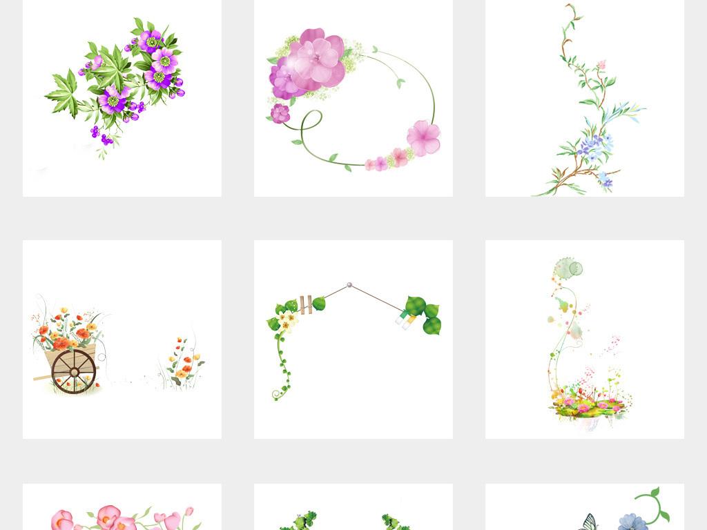春天绿色树藤树叶花藤花边藤蔓藤条图片素材