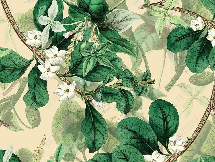 2018数码印花花卉花朵无缝花鸟植物图案