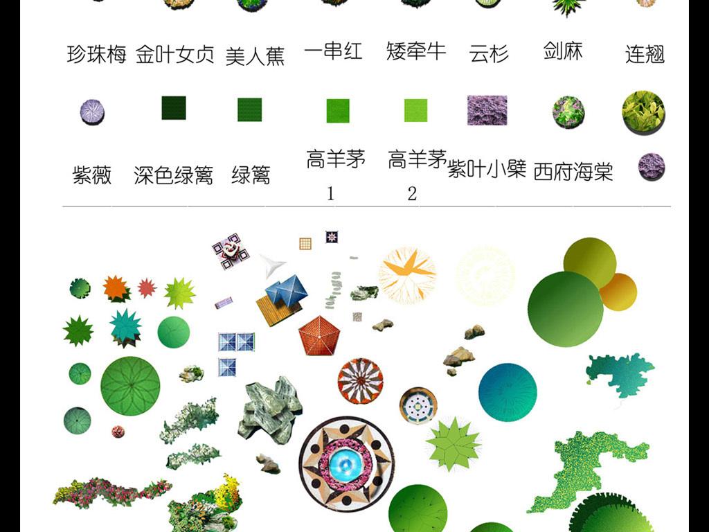 园林植物平面图集