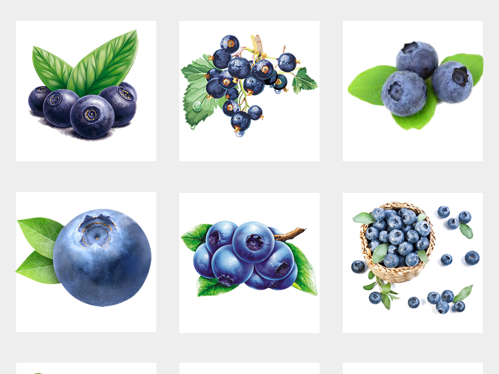 ps海報素材手繪藍莓素材綠葉藍莓手繪水果綠葉手繪新鮮設計素材手繪