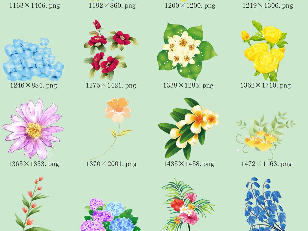 50款唯美手绘花卉png免抠2
