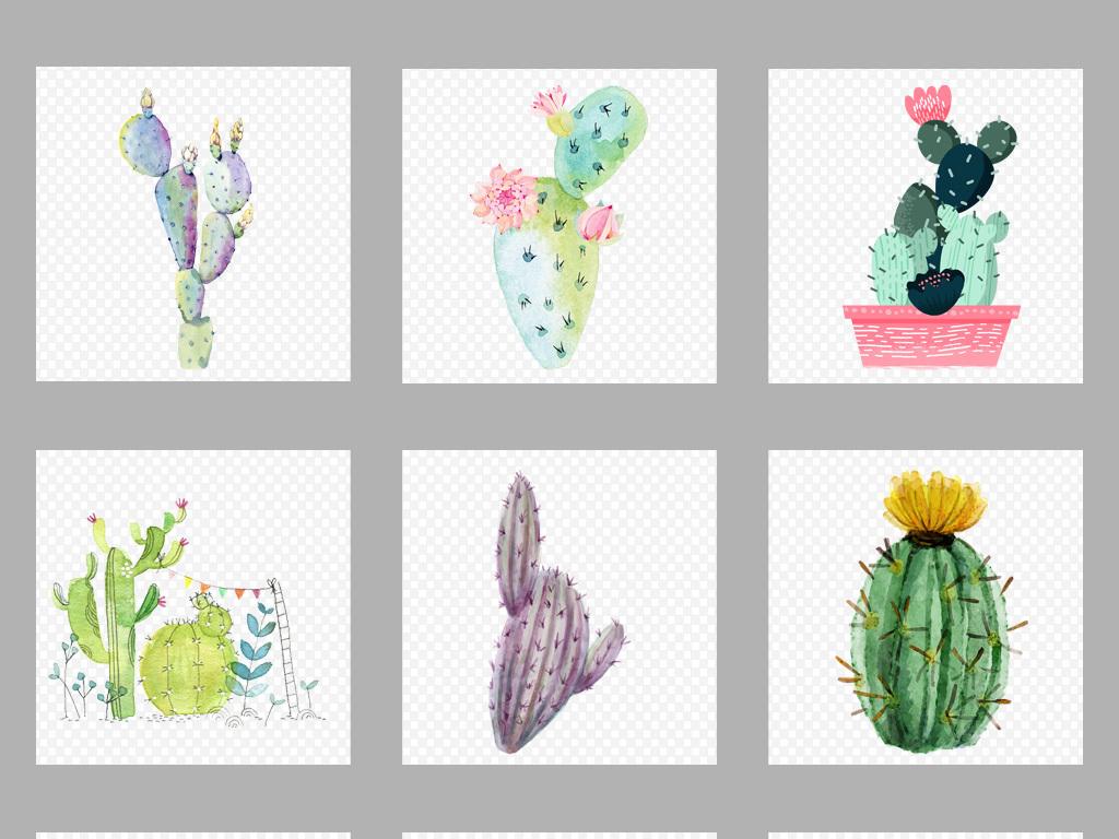 50款唯美手绘水彩仙人掌png素材