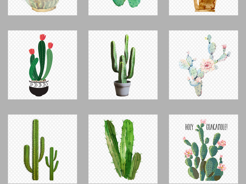手绘盆栽植物花纹仙人掌植物素材清新植物植物素材清新素材仙人掌素材