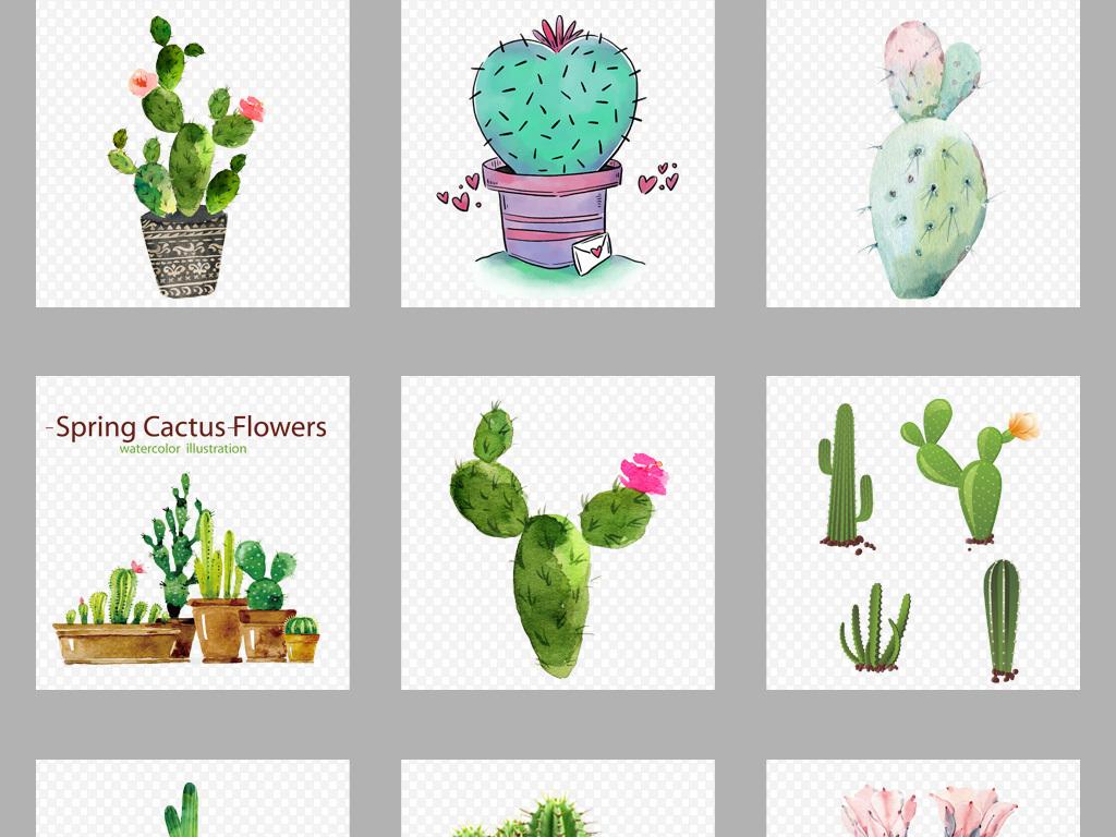 植物素材清新素材仙人掌素材手绘植物背景植物花朵手绘手绘花卉植物