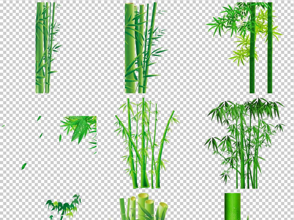 卡通手绘竹子竹林