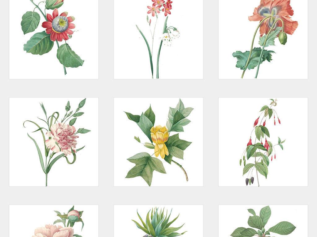 小清新边框春季春季素材手绘树叶边框花卉树叶叶子手绘花卉素材绿叶手