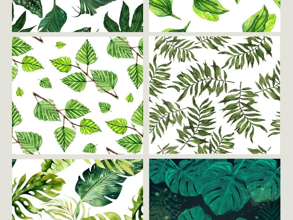 龟背叶手绘丛林壁纸花朵装饰画壁画水彩画北欧水彩树叶花卉热带叶子
