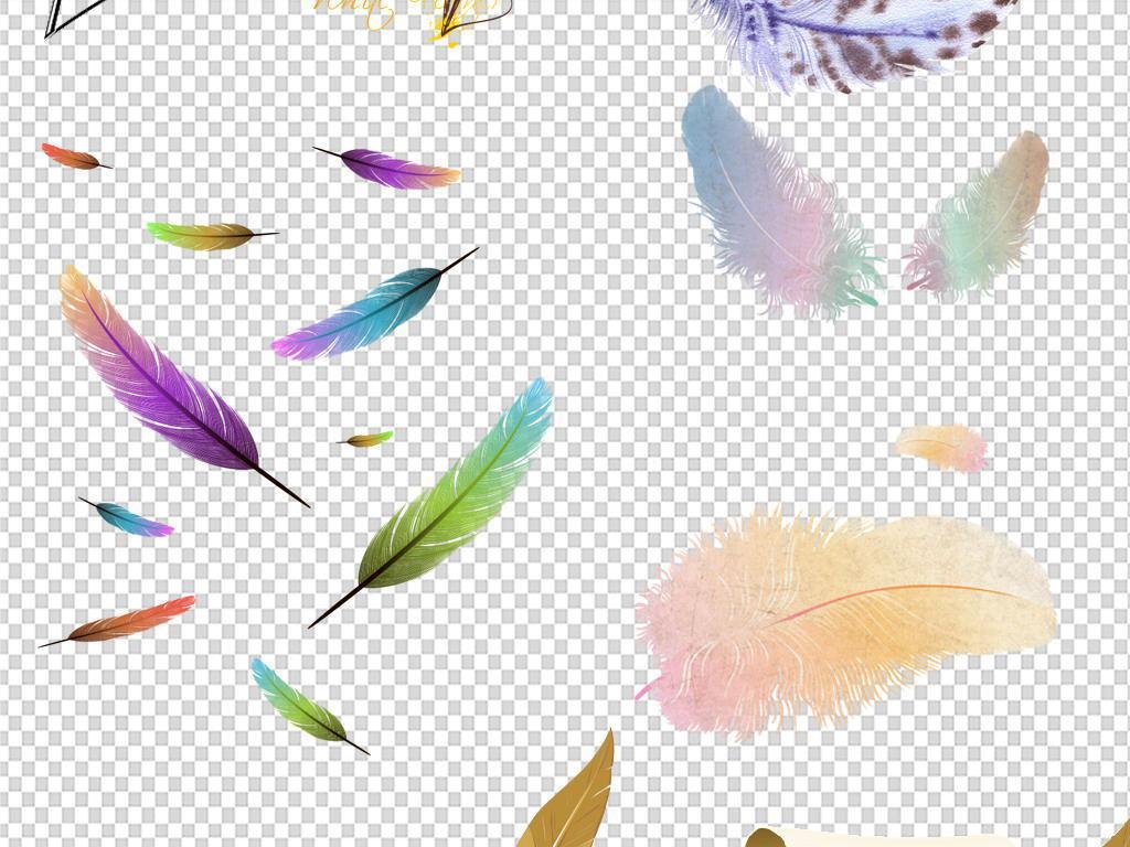 羽毛孔雀羽毛彩色手绘漂浮羽毛png素材