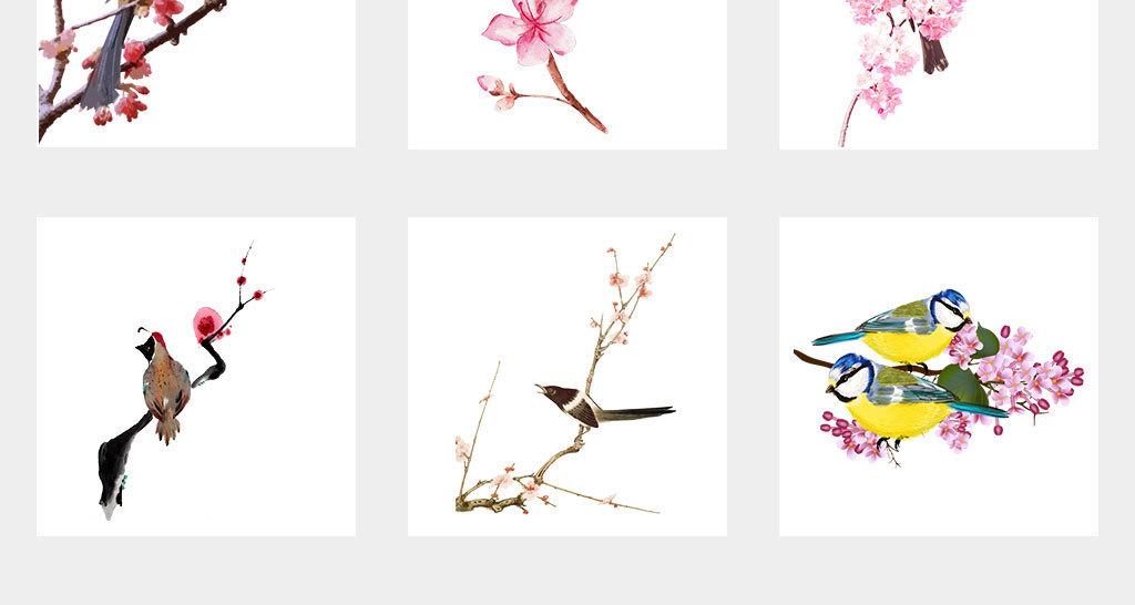 手绘卡通各种鸟类麻雀鹦鹉喜鹊png动物素材